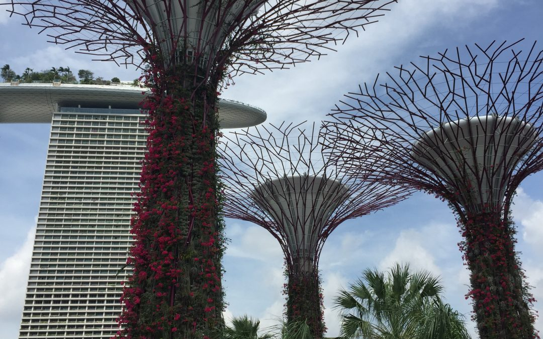 One day in Singapore – Lá amháin i Singapore